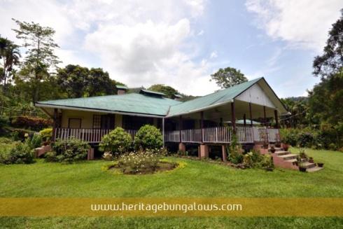 fagu_tea_bungalow